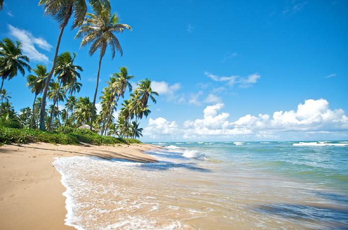Brasilien Urlaub 2018: Samba, Strand und Regenwald